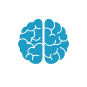 Cerveau représentant la précocité